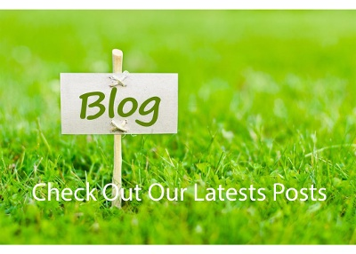 Check out our latest posts-1