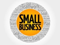SBA Bid Protest-Joint-Venture-Agreement