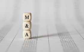 Mergers & Acquisitions representations and warranties